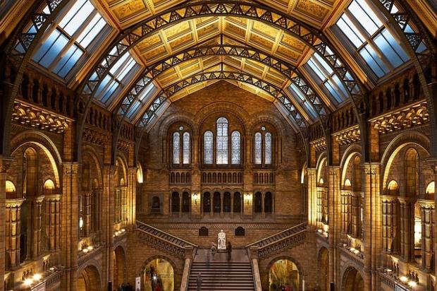 restored ceilings, antique sky lights, beautiful old buildings