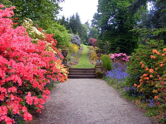 English garden, landscaping ideas, park flowers