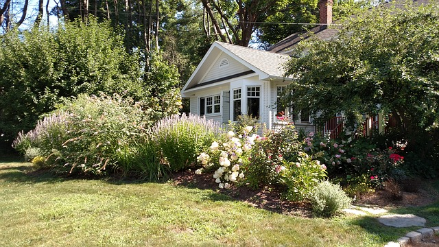 cottage, landscaping